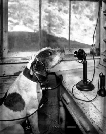 "Chapin Bower. ""Mr. Barker"" at the Dog Pound (1926). Washington State Historical Society."