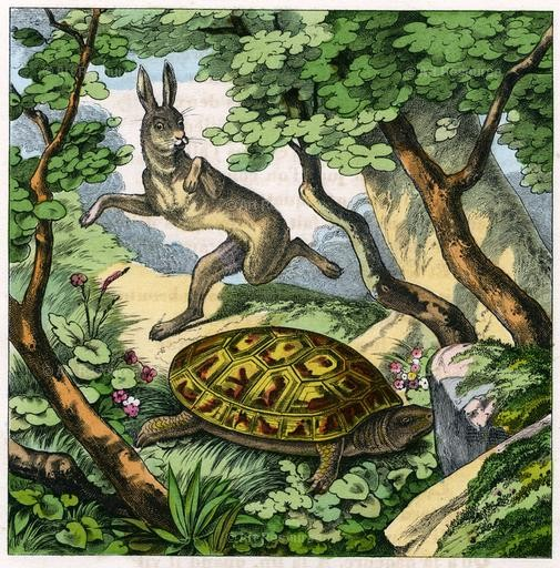 The Tortoise and the Hare. Illustration for The Fables of Jean de la Fontaine (1880 edition).